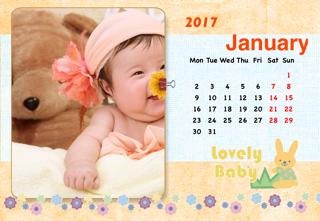 'baby','calendar','photo'